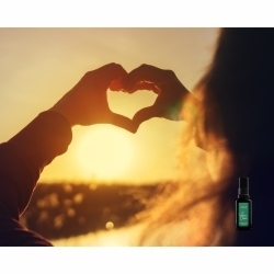rituel parfume, ode a l'amour, chakra coeur, parfum eveil